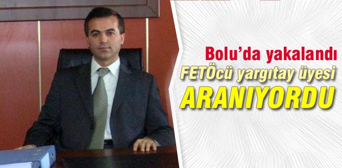 Aranan yargıtay üyesi Bolu'da yakalandı