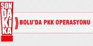 Bolu'da PKK operasyonu