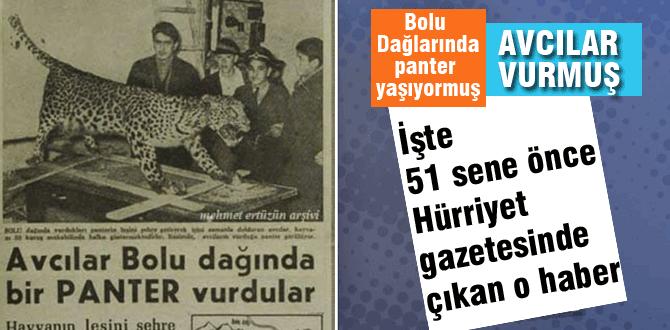 Son Anadolu Aslanı Bolu'da mı vuruldu ?